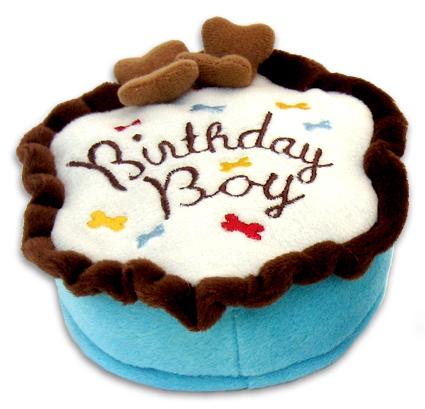 Birthday Boy Cake Toy